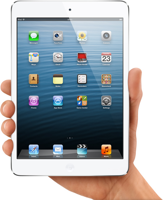 iPad Mini WiFi (A1432)